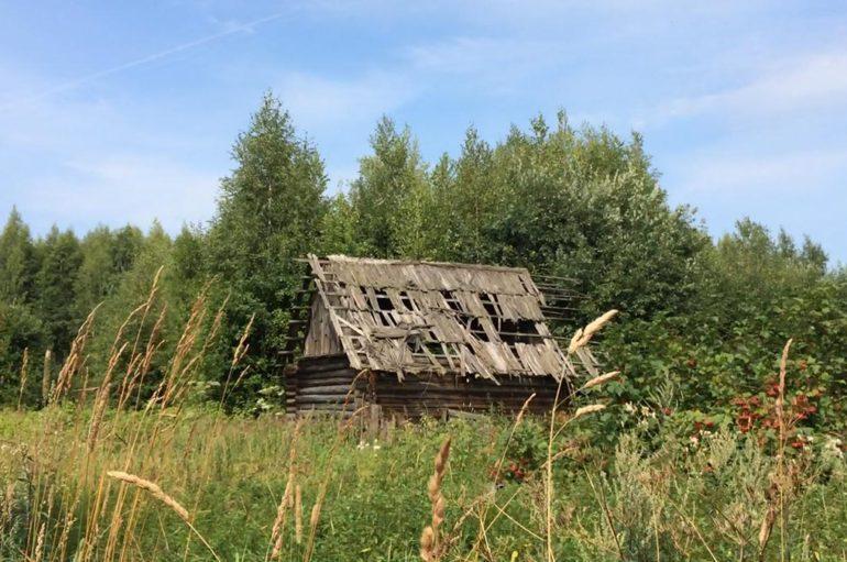 Забытая деревня (Беларусь)