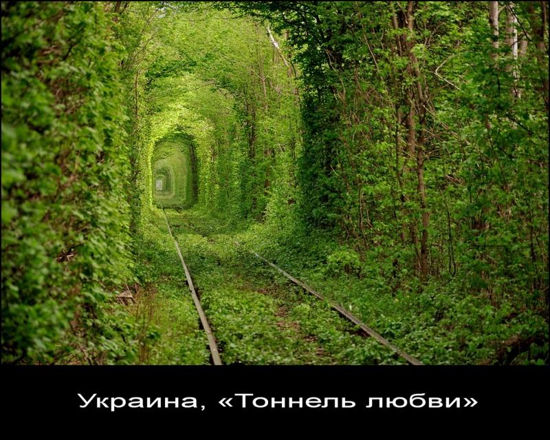 """""""Тоннель любви"""". Украина."""