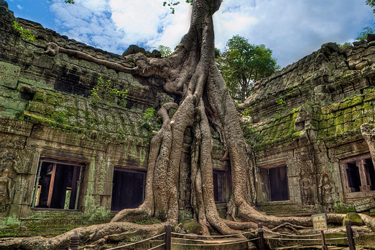 Заброшенный храмТа Прум (Ангкор)