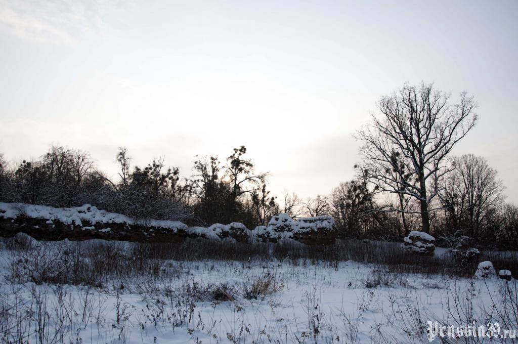 Замок Гросс Вонсдорф, остатки стены. Зима 2010