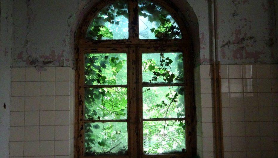 Самый грустный в мире вид из окна
