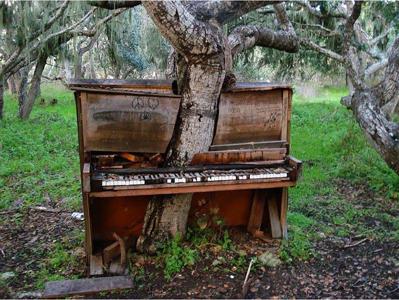Брошенное пианино