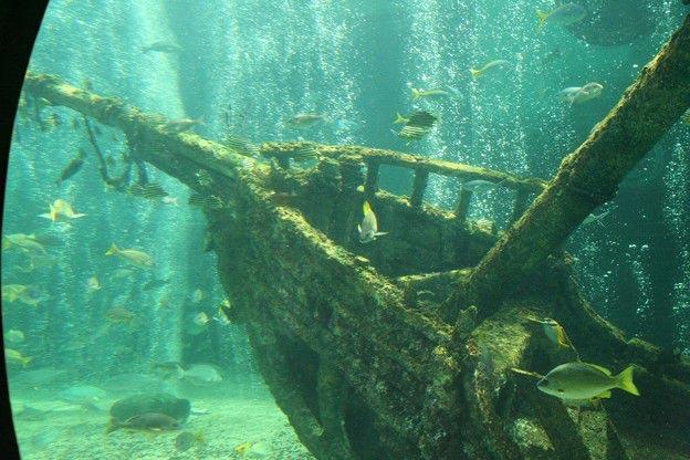 Затонувший деревянный корабль