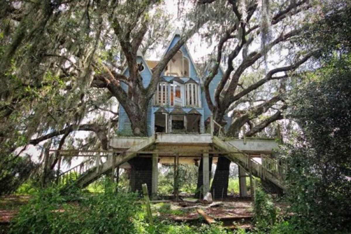 Дом в викторианском стиле на дереве (Флорида,США)