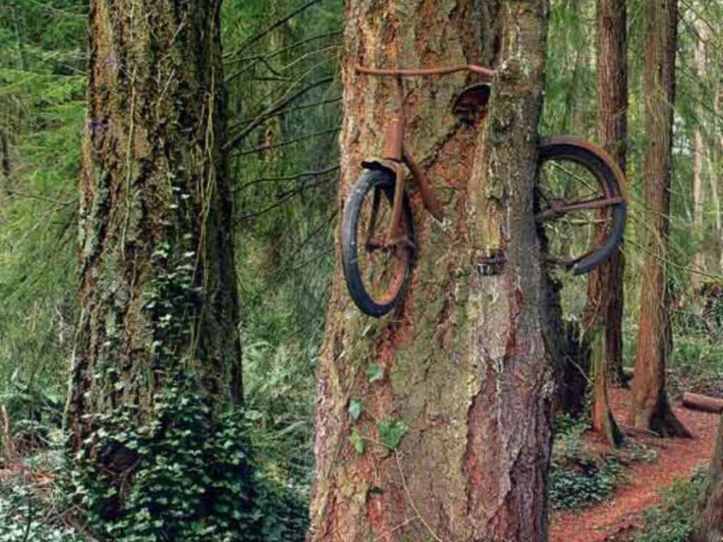 Брошенный велосипед