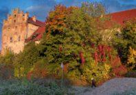 Замок Георгенбург в Калининградской области | Фото