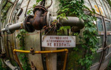 Тепличные условия | Заброшенный агрокомплекс