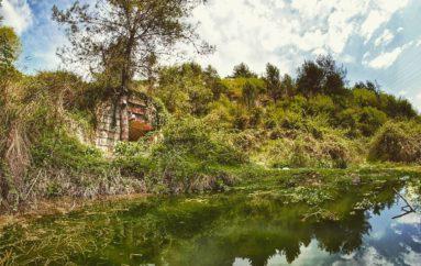 Живописные заброшенные бункеры | Фото