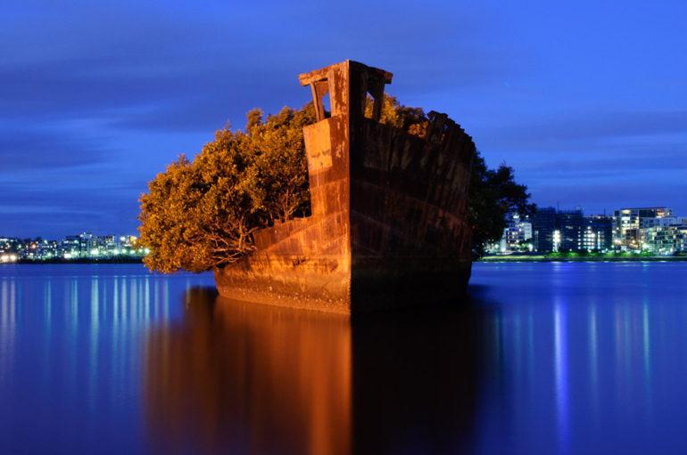Заброшенное судно — плавающий мангровый лес