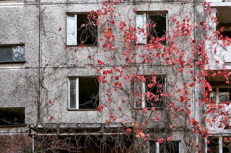 Разноцветные дворы Припяти 🍂🌿🍁
